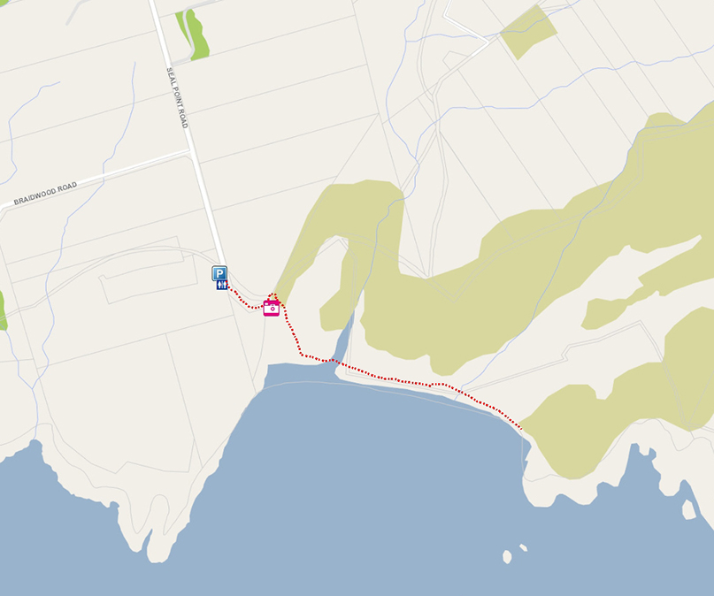 Seal Point web map